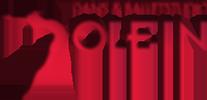 Dans en Balletstudio Jolein Logo